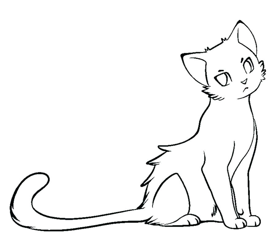 900x788 Cat Coloring Page Printable Black Cat Coloring Pages Color Cats