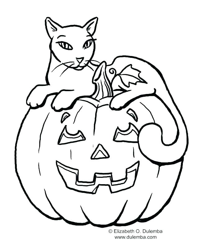 640x810 Halloween Cat Coloring Page Black Cat Coloring Pages Halloween