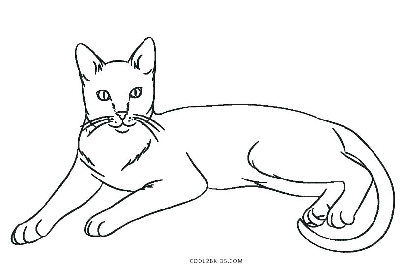 820x547 Black Cat Coloring Page Cats Coloring Pages Epic Coloring Pages