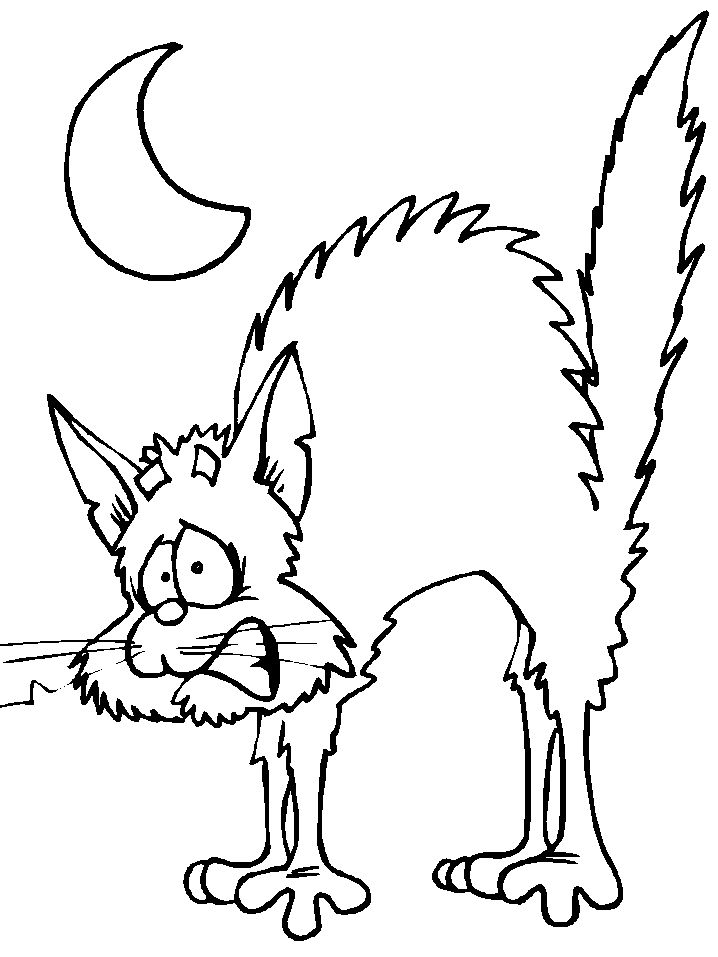 Black Cat Coloring Pages Halloween