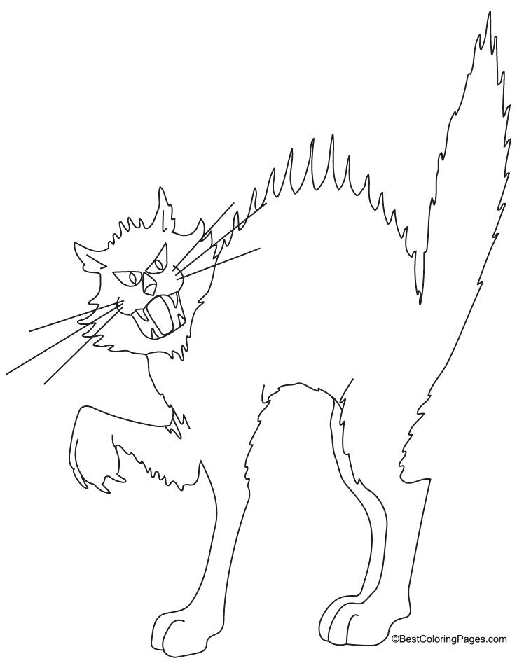 738x954 Black Cat Coloring Pages Black Cats Mirror Marvel Black Cat