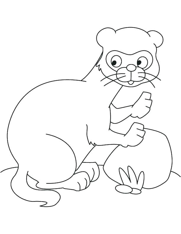 Pets Online Coloring Pages Page 1