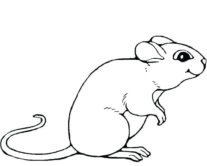 720x576 Lab Rats Coloring Pages Black Lab Coloring Pages Black Lab