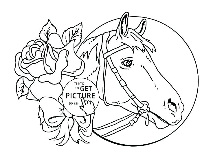 736x551 Coloring Pages Of Horses And Ponies Free Horse Coloring Pages