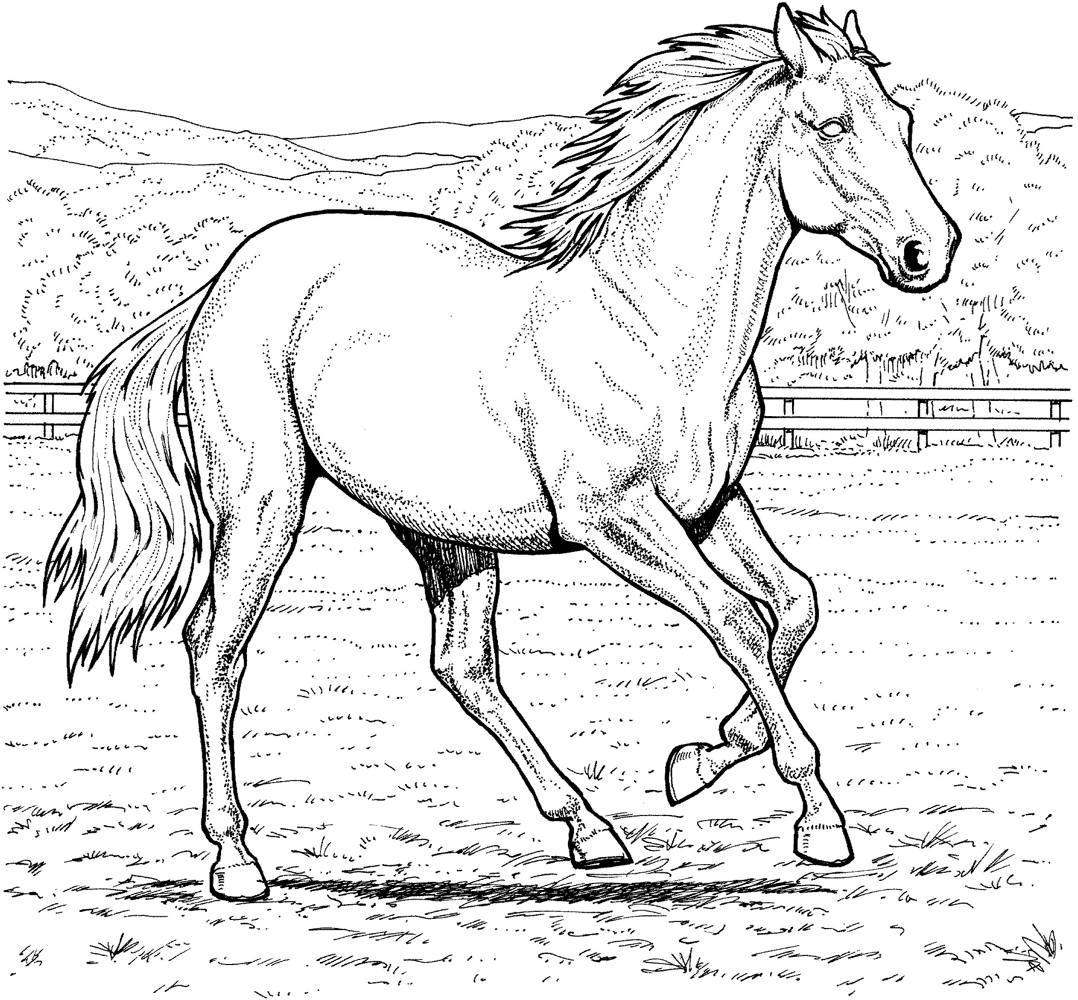 2126x1973 New Coloring Pages Horses Jumping
