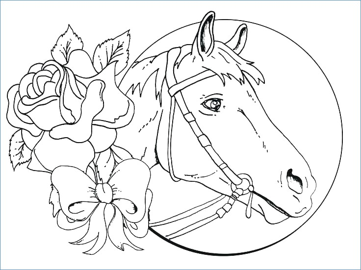 736x551 Beautiful Horse Coloring Page
