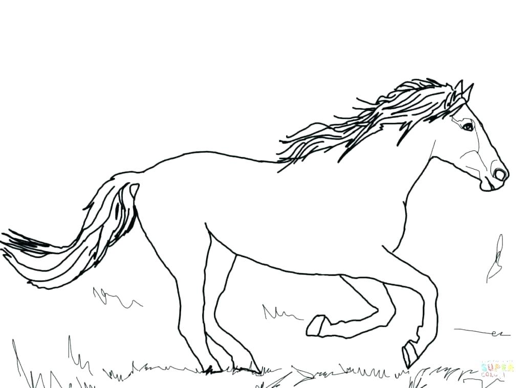 1024x759 Stallion Coloring Pages Spirit Riding Free And Coloring Page
