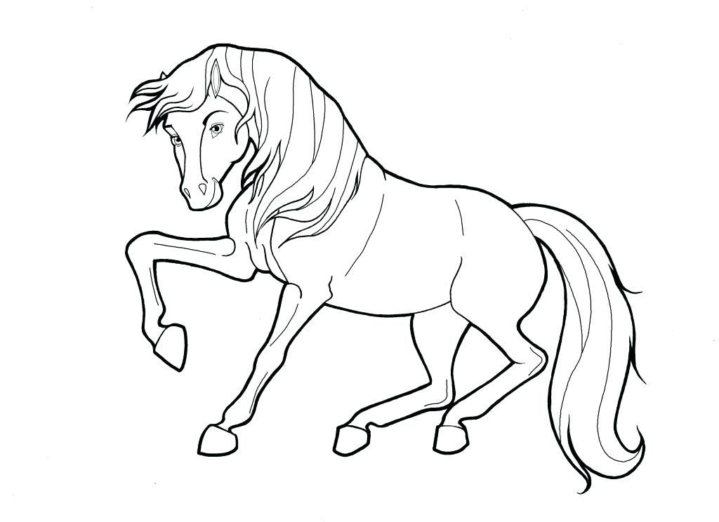 1024x744 Stallion Coloring Pages Stallion Zebra Coloring Page Black