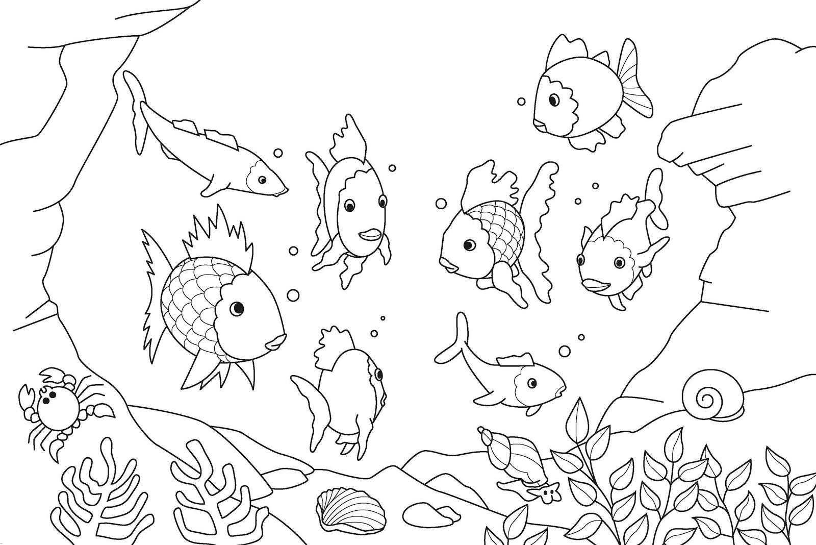 1600x1068 Drawing Site For Kids Sketching For Kids