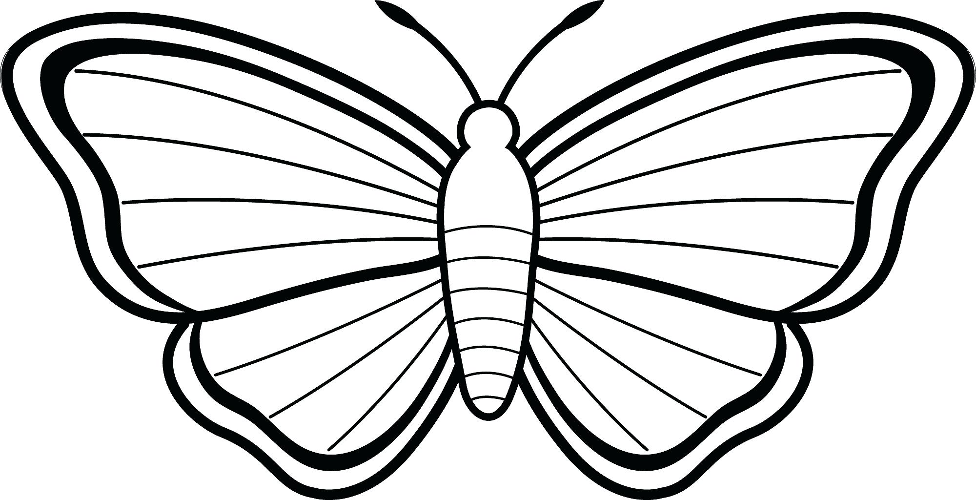 2000x1024 Butterflies And Flowers Coloring Pages For Adults Fantastic Blank