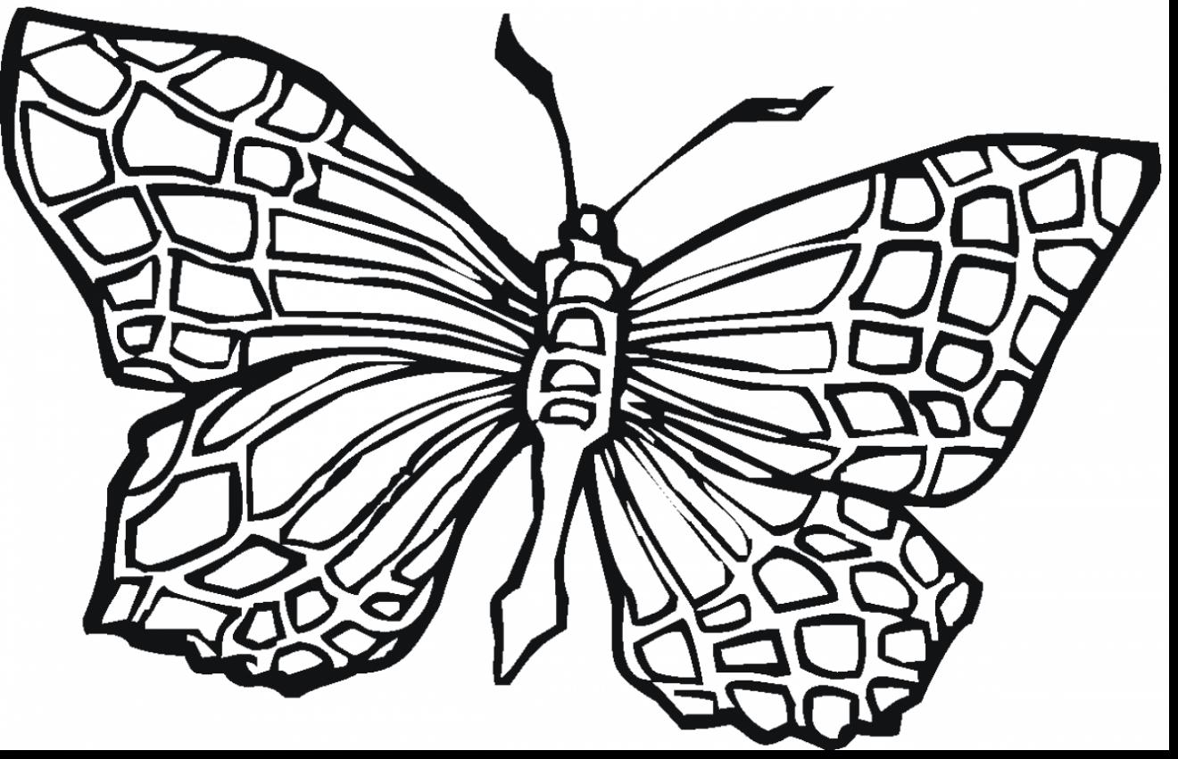 1320x851 Superb Printable Coloring Page Butterfly Colouring With Teenage