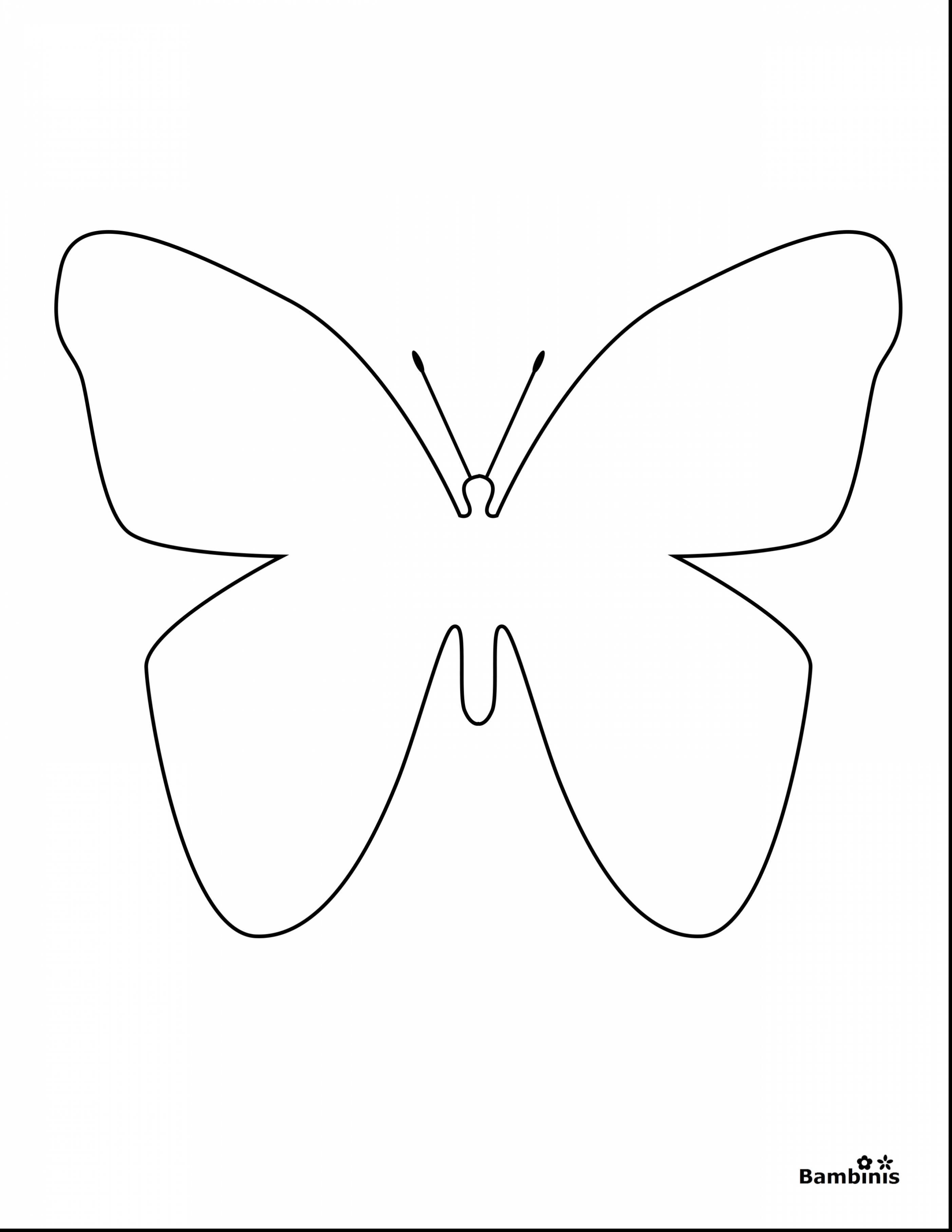 2805x3630 Very Cute Butterfly Coloring Pages Images Wecoloringpage