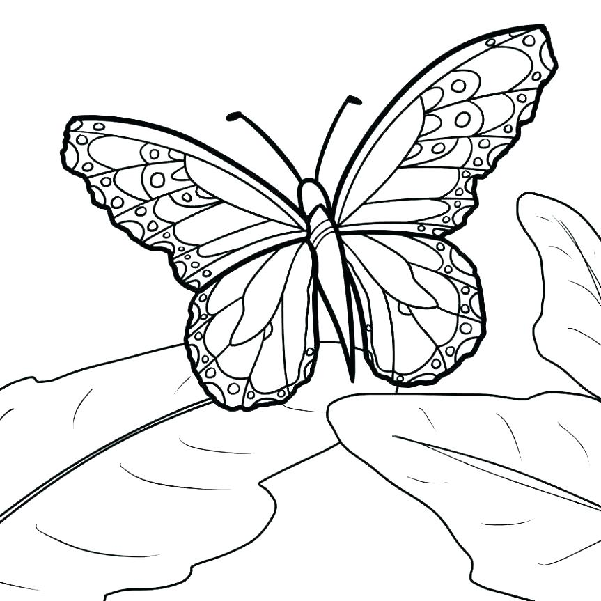 863x863 Blank Coloring Pages Blank Coloring Pages For Adults Flowers