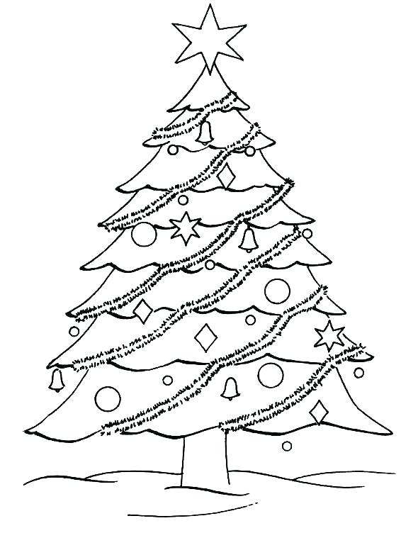 590x776 Blank Christmas Tree Coloring Page Tree Coloring Sheets Printable