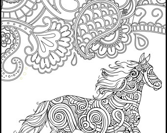 340x270 Printable Coloring Page Adult Coloring Pages Horse