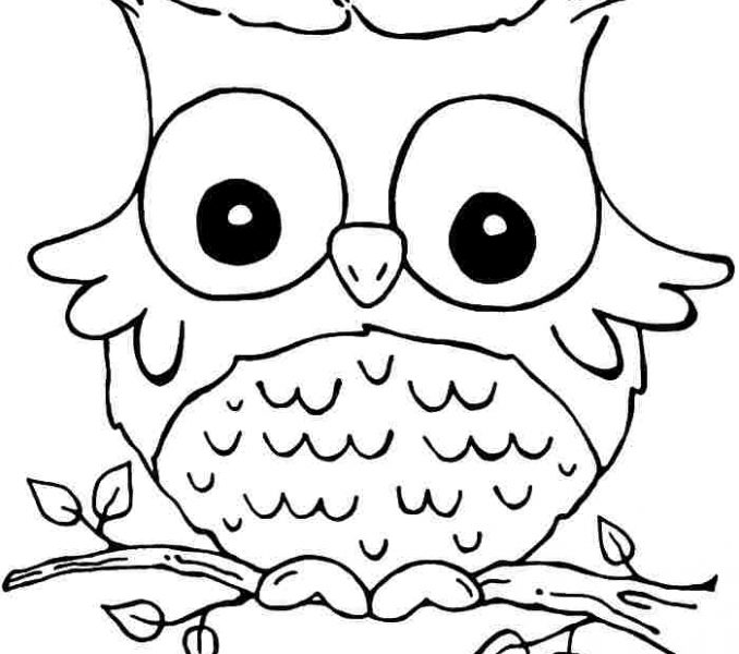 678x600 Girls Printable Coloring Pages Coloring Page Ideas
