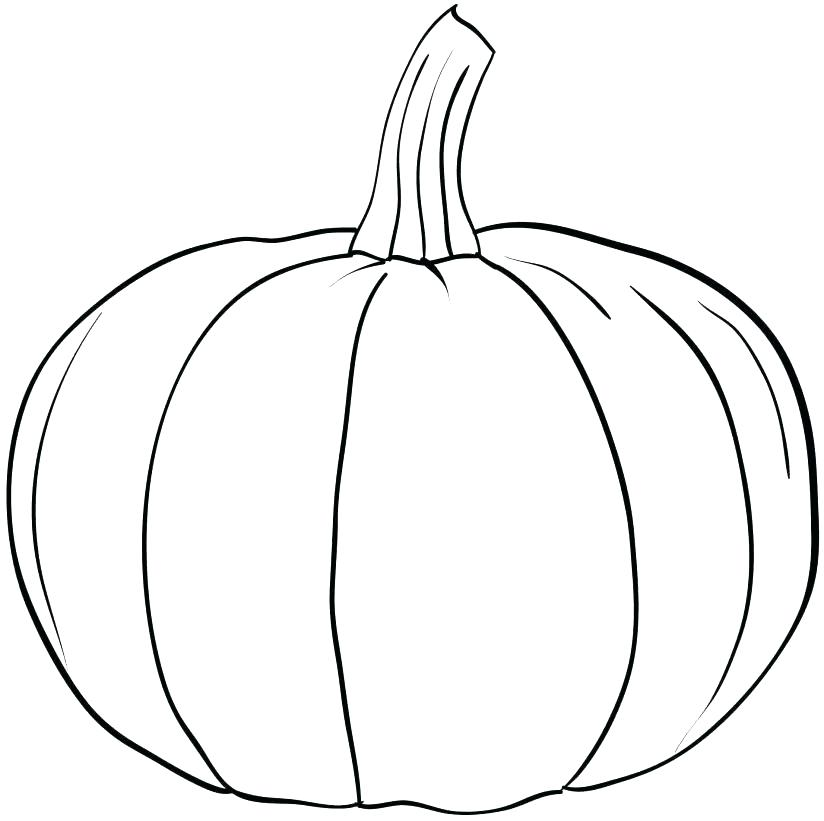 824x821 Blank Pumpkin Coloring Pages Pumpkin Printable Coloring Pages