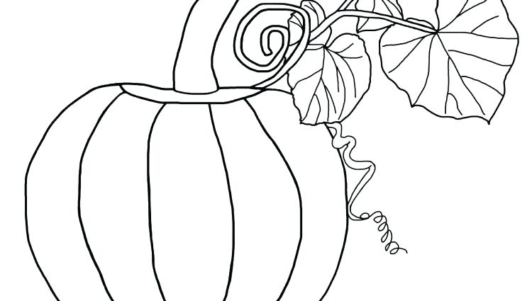 750x425 Pumpkin Coloring Page Blank Pumpkin Coloring Page Free Printable