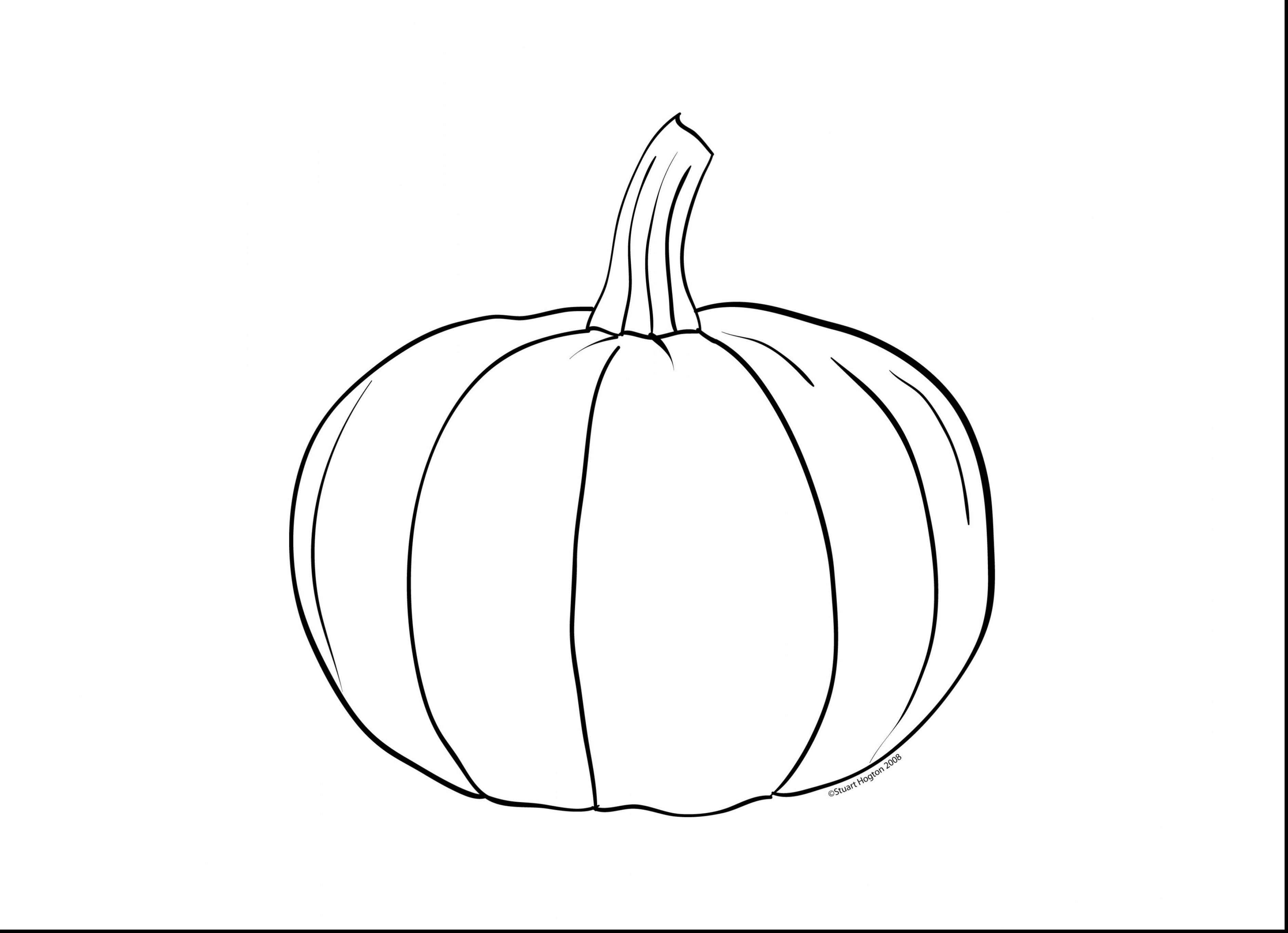 3767x2728 Unbelievable Blank Pumpkin Coloring Pages With Halloween Amazing
