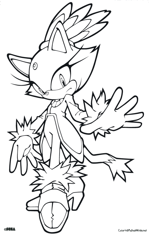 500x787 Blaze The Cat Coloring Pages
