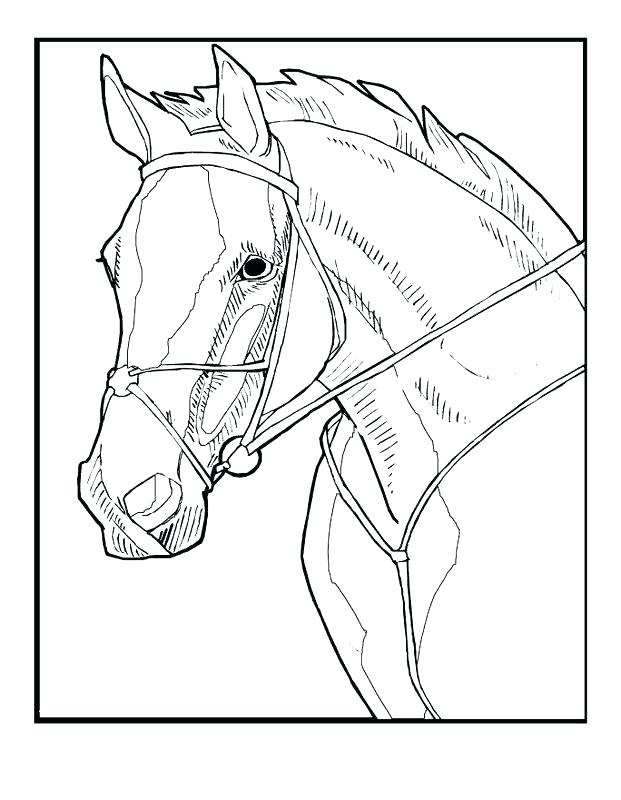 621x800 Judy Moody And Stink Coloring Pages Book
