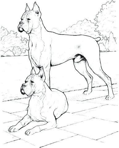 386x480 Bloodhound Coloring Pages Coloring Pages Cute Little Coloring Page