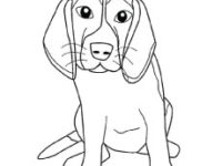 200x150 Bloodhound Coloring Pages Coloring Pages