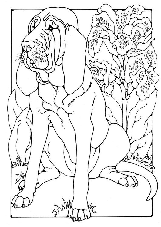 531x750 Coloring Page Bloodhound Dog Patterns Bloodhound