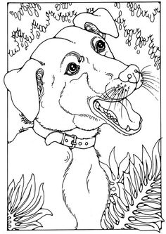 236x333 Bloodhound Adult Coloring Pages