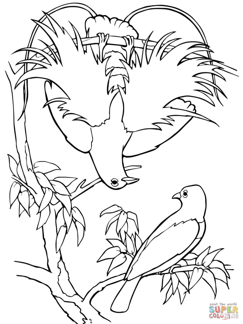 1024x1365 Blue Bird Of Paradise Coloring Page Free Printable Coloring Pages