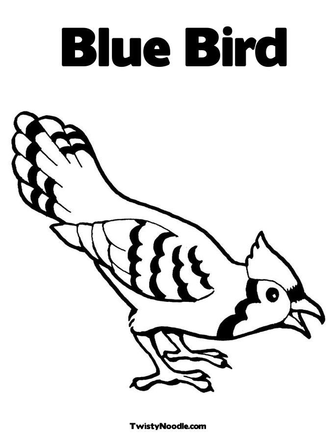 685x886 Printable Pictures Of Birds Bluebird Coloring Page Printable