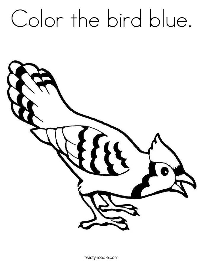 685x886 Color The Bird Blue Coloring Page