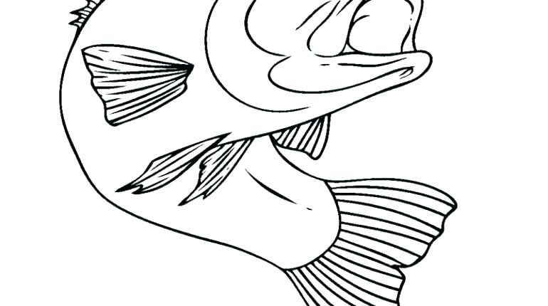 770x430 One Fish Two Fish Coloring Pages Red Fish Coloring Pages One Fish