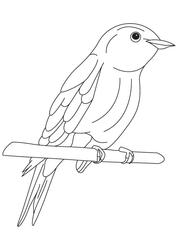 613x860 Blue Bird Coloring Pages Bluebird Of Happiness Coloring Page Blue