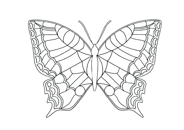 640x454 Coloring Page Butterfly Butterfly Coloring Page Butterfly Life