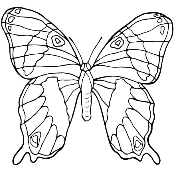 624x680 Coloring Page Butterfly Cute Butterfly Coloring Pages Butterfly