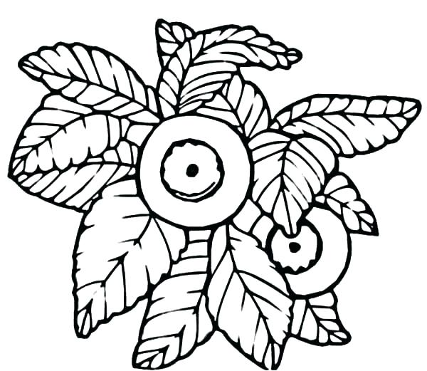 600x521 Muffin Coloring Page Blueberry Muffin Coloring Pages To Print