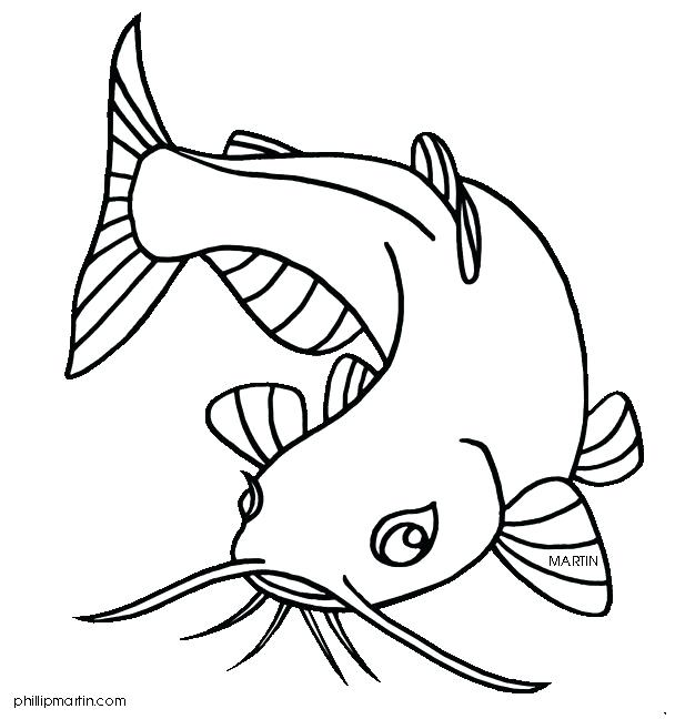 617x648 Catfish Coloring Page Color Channel Catfish Coloring Page