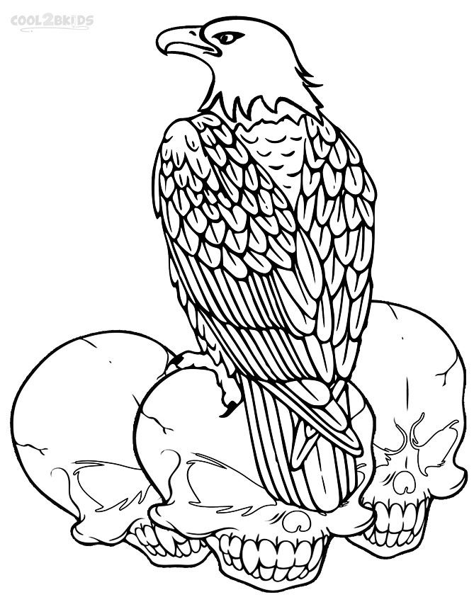 669x850 Printable Bald Eagle Coloring Pages For Kids