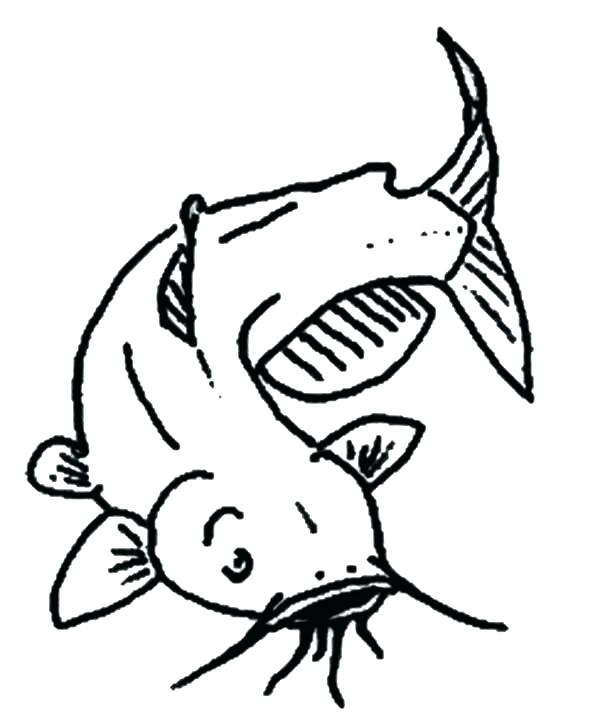 600x723 State Fish Channel Catfish Coloring Page Show Me Sandwich Coloring
