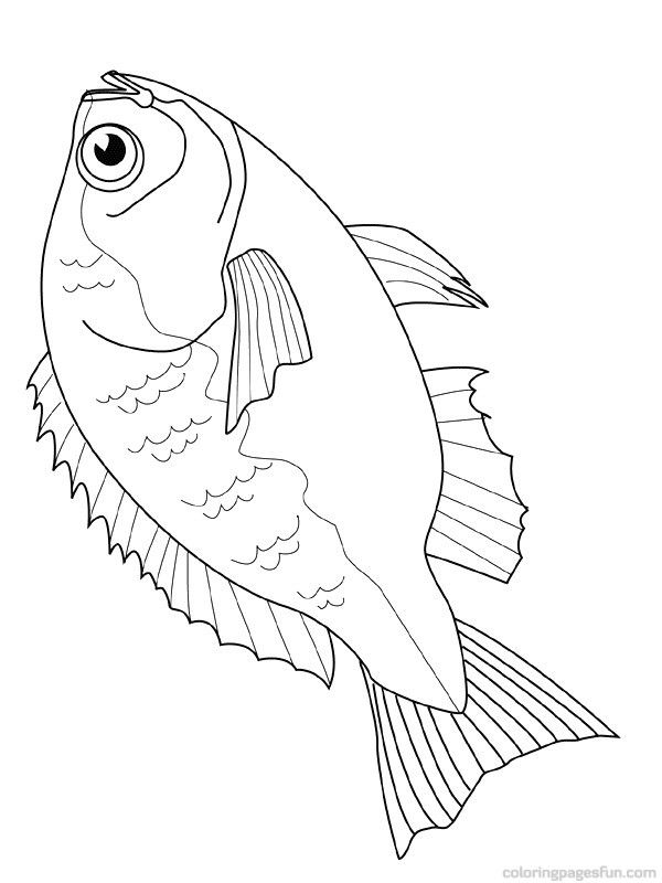 600x800 Free Downloadable Jumbo Fish Coloring Pages Fish Coloring Pages