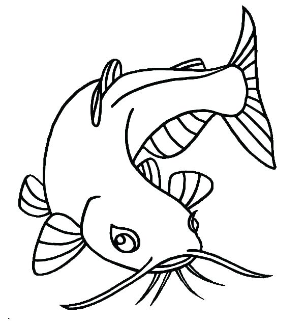 600x630 Catfish Coloring Page Bluegill Coloring Pages Catfish For Kids