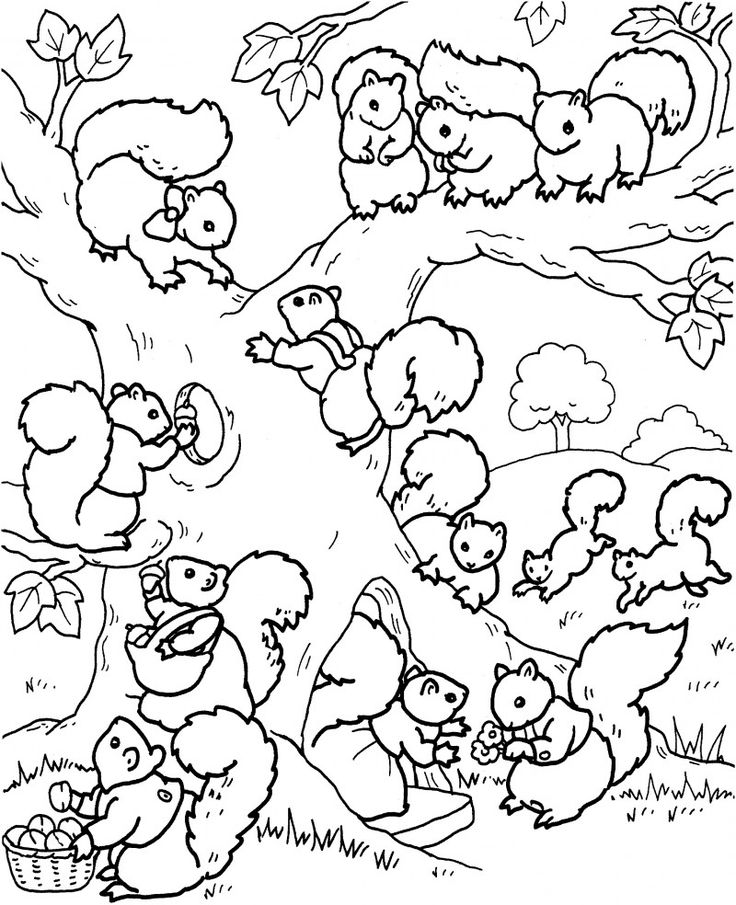Bob Ross Coloring Page At Getdrawings Com Free For Personal Use