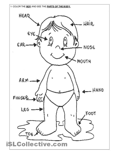 400x517 Related Body Parts Coloring Pages For Preschool Slp