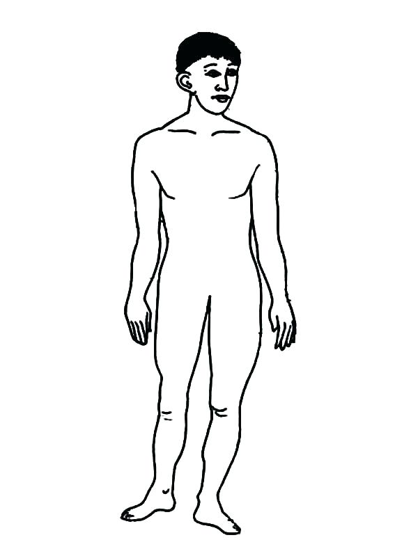 600x789 Body Coloring Pages Human Body Coloring Sheets Body Coloring Pages