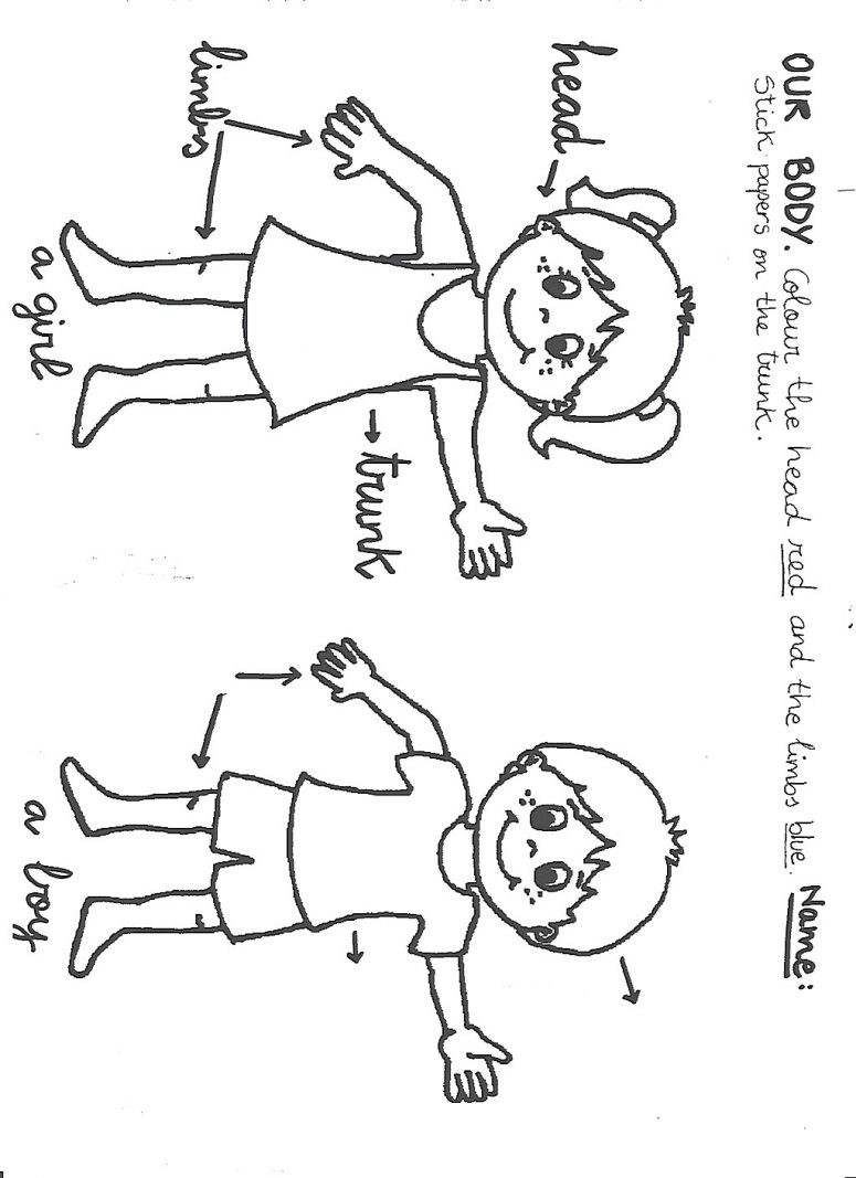 775x1067 Body Parts Coloring Pages For Preschool