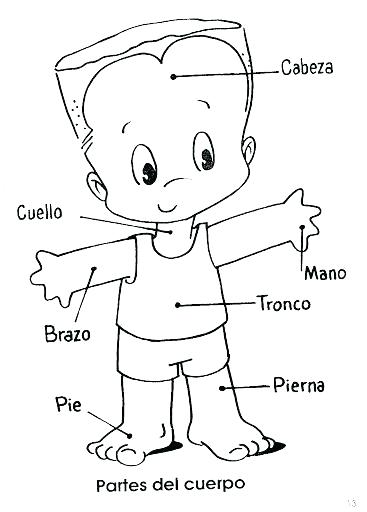 367x512 Body Coloring Pages Body Parts Coloring Pages Body Parts Coloring