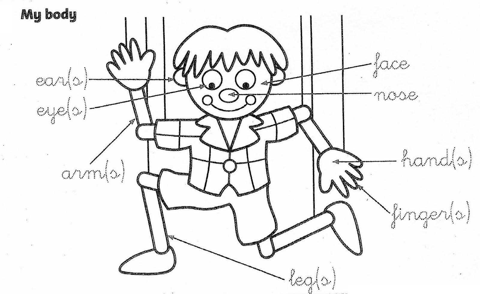 1600x983 Body Parts Coloring Page