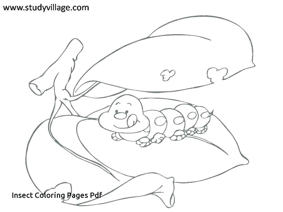 960x720 Insect Coloring Page Insect Coloring Insect Coloring Funny Insects