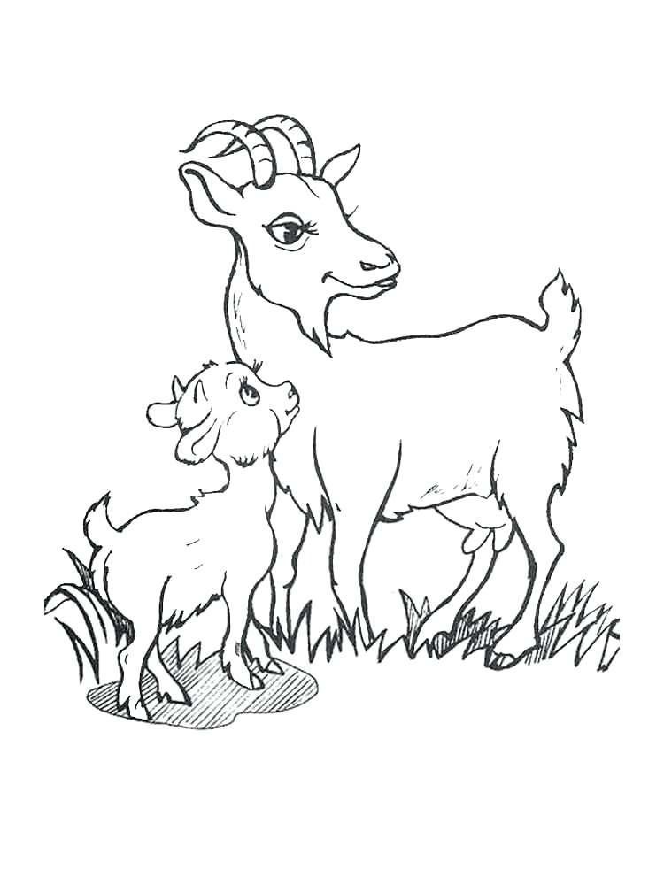750x1000 Goat Coloring Pages Art And Lore Goat Coloring Page Billy Goat